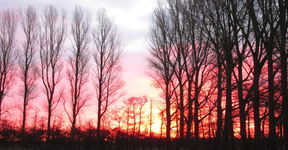 Sonnenaufgang Cuxk schmal